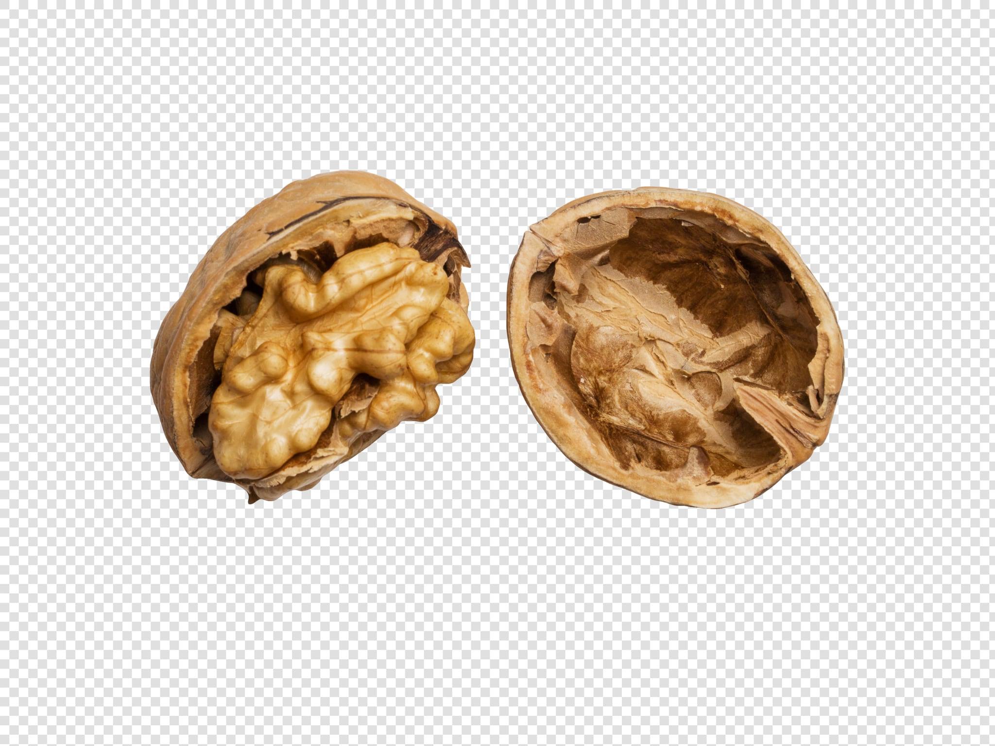 Walnut PSD image with transparent background