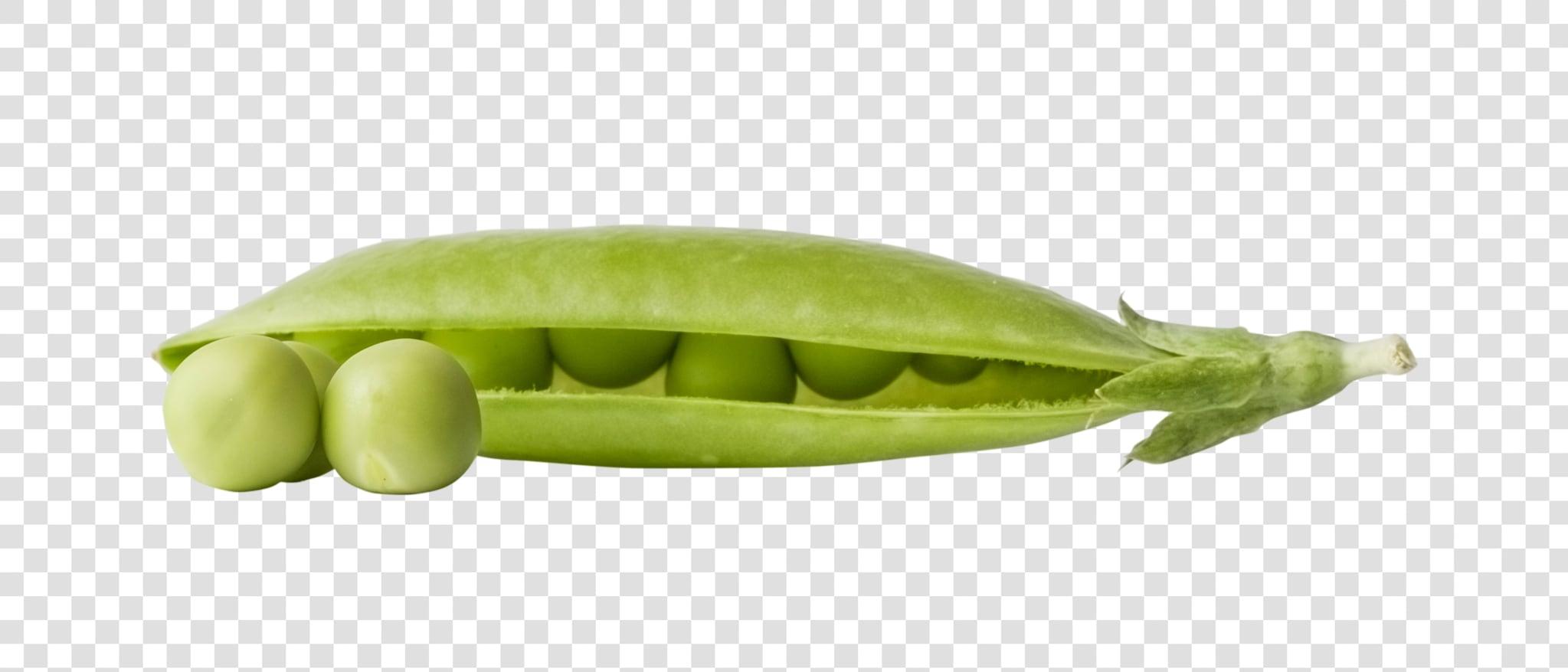 Green pea PSD layered image