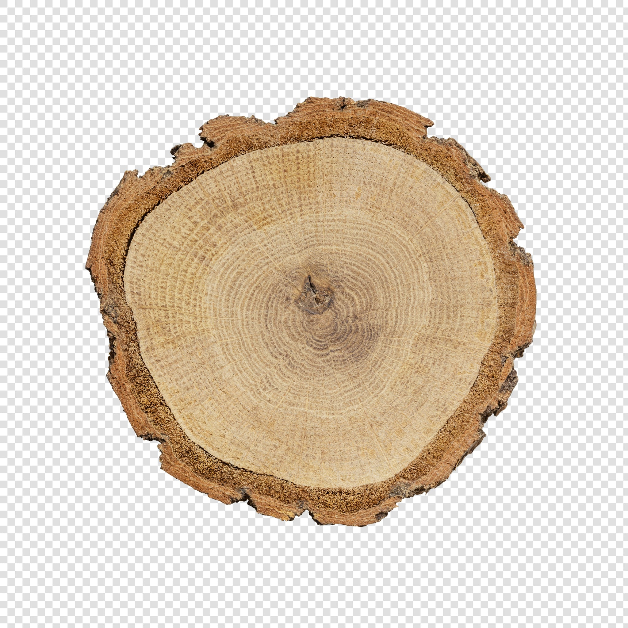 Isolated Wood slice psd image