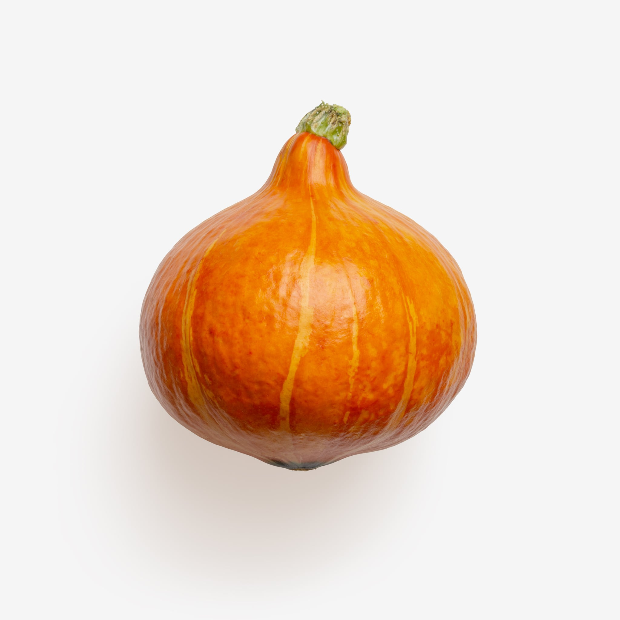 Isolated Pumpkin psd image
