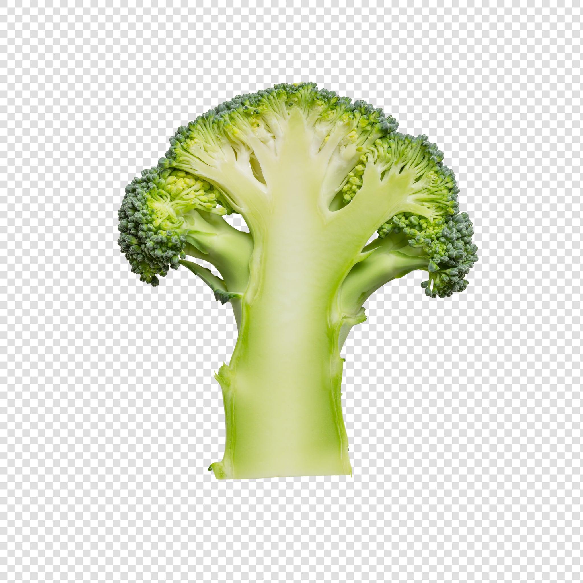 Isolated Broccoli psd image