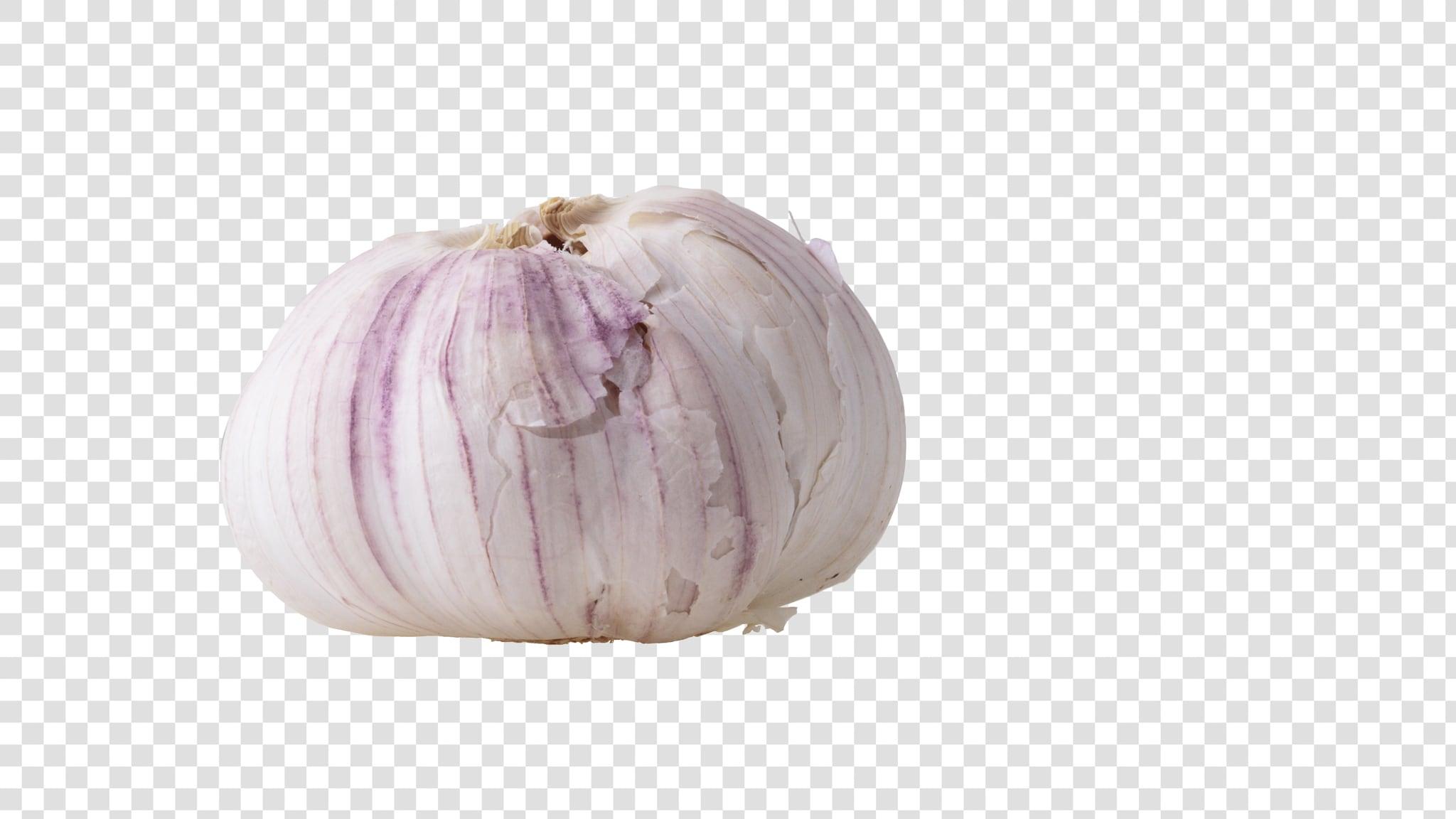 Garlic image asset with transparent background