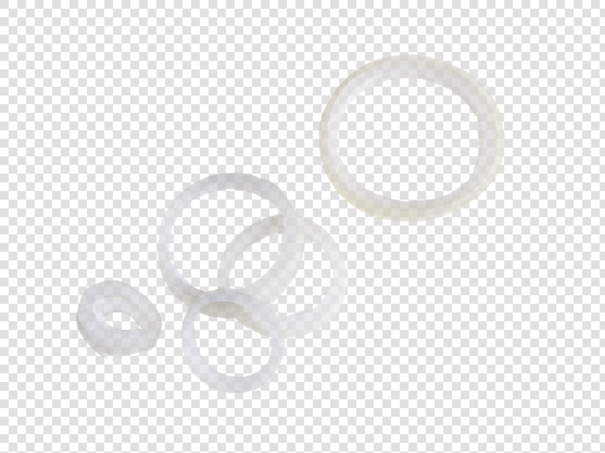 Onion PSD layered image