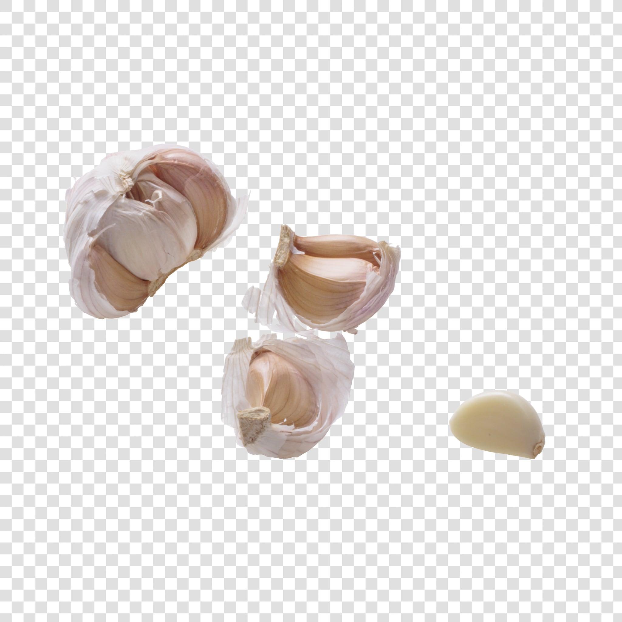 Garlic PSD layered image