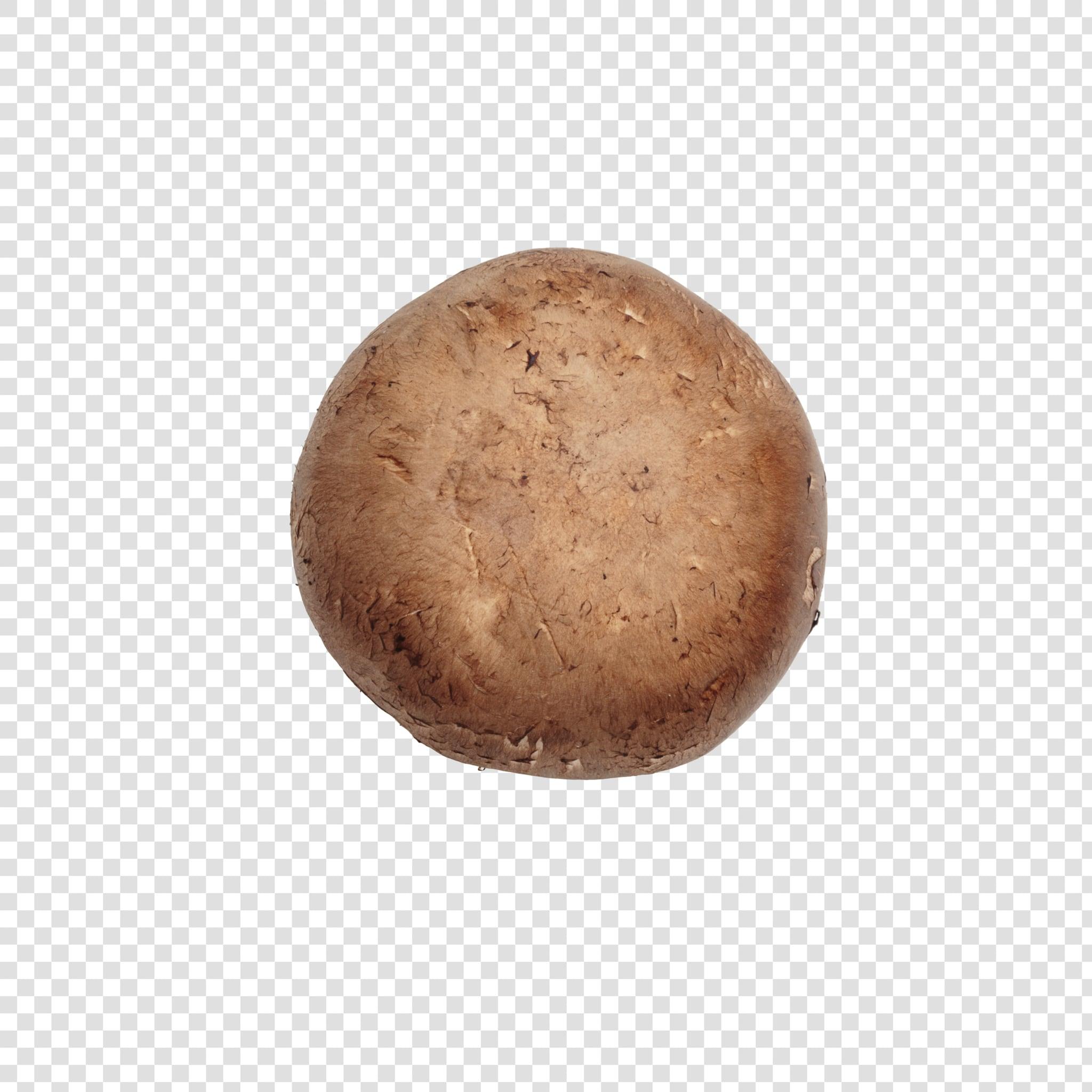 Champignon image with transparent background
