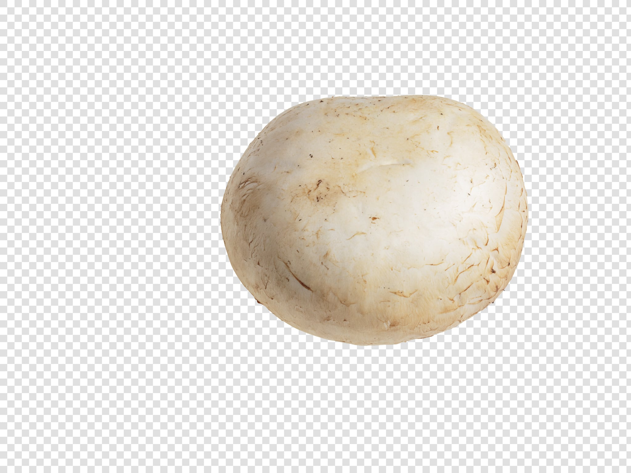 Champignon image with transparent background