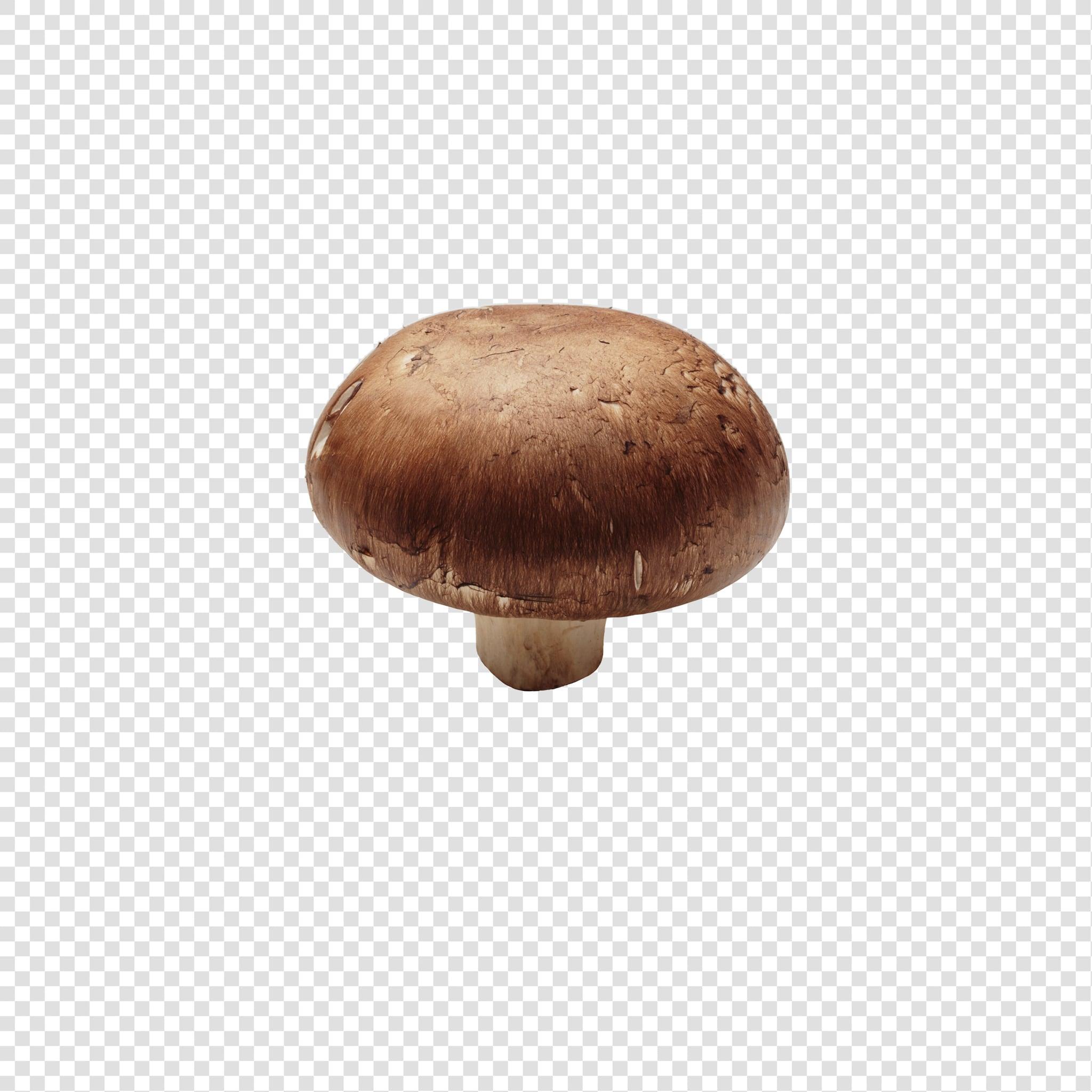 Champignon image asset with transparent background