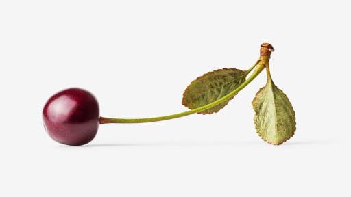 Cherry image with transparent background